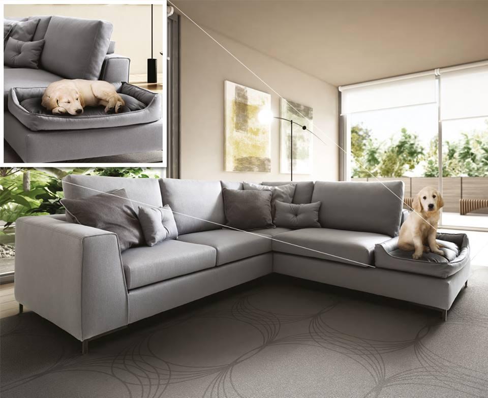 divano per animali